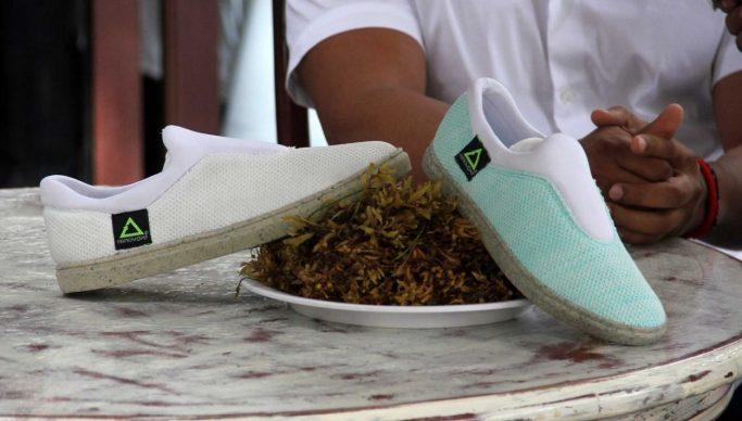 zapatos de altura para hombres santiago chile julio